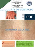 Dermatitis Por Contacto 2