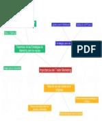 Mapa Mental Trade Marketing Eduardo Reyes