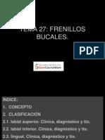 frenillos.pdf