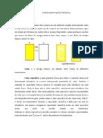Fundamento Teórico Relatório de Física