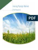 Lecture 11 - Complete Slides on Entering Foregin Market