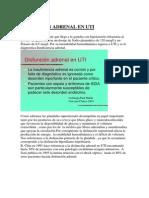 PCritico22-Disfuncion_adrenal_en_UTI.pdf