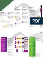Traffica - Brochure