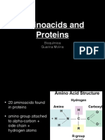 Amino Acid Os