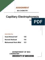 capillaru electrophoresis