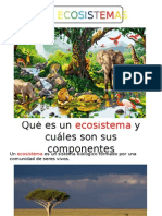 Los Ecosistemassaray