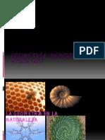 Geometría Descriptiva y Arquitectura