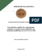 PeroxidacionCataliticaContaminantes