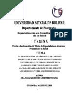 TESINA COMPLETA