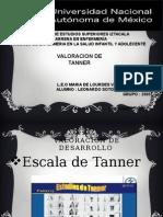 Estadios de Tannerr