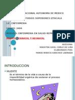 Muerte Perinatal y Neonatal