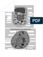 Parts of a Cell Reviewer