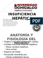 insuficiencia hepatica ppt