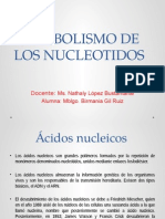 Expocicion Nucleotidos
