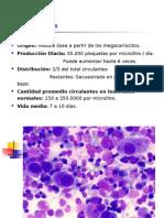 Tema 11. Trastornos Plaquetarios Cuantitativo Pti, Cualitativo - Dra. Nilda Iriarte