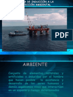 INDUCCION AMBIENTAL