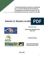 Informe Alternativo Derecho a la Alimentación