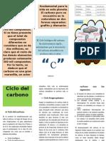 Triptico Ciclo Del Carbon1