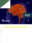 Mind Brain Spring