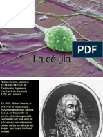 La Celula- Prof Laura Zanin.pdf