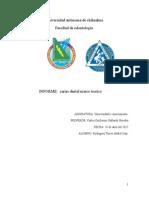 marco teorico caries dental