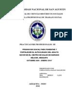 PROMOCION SOCIAL PARA FOMENTAR Y FORTALECER EL AUTOCUIDADO DEL ADULTO MAYOR EN EL CENTRO DE SALUD DE MARIANO MELGAR, AREQUIPA.doc