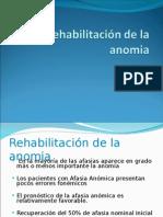 Rehabilitación de la anomia