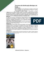 Biodigestores nitrificação desnitrif