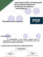 CG+HPLC