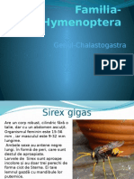 Entomologie