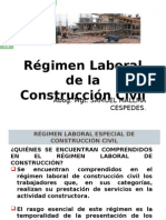 Regimen Especial de Construccion Civil