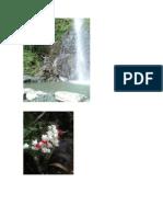 cascada (1).docx