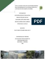 Ecologia Terrestre Final Informe t.s