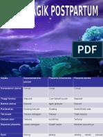 Gambar HPP