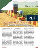 Breve historia de la agroexportación en el Perú.