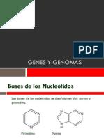 Genes y genomas