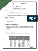 PRACTICA Nº1 HIDRO.docx