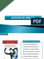 ACCION DE GRUPO.pdf