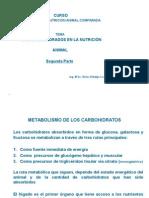 Metabolismo de Los Carbohidratos - Segunda Parte - Impresion