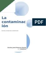 La Contaminación Ambiental Tarea234