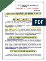 049. Sfanta si falsa traditie.pdf
