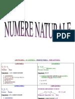 numere naturale