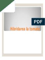 Hibridarea La Tomate,Ceapa, Varza, Morcov