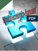 Analiza economico financiaraII