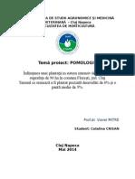 Proiect pomologie - livada cires intensiv - Catalina Crisan.doc