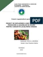Proiect legumicultura - Catalina Crisan.doc