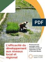 l-efficacit--du-d-veloppement-aux-niveaux-local-et-r-gional.pdf