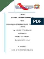 caratula Universidad nacional del altiplano.docx