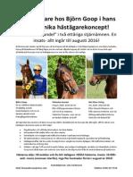 Prospekt Elithästarna PDF