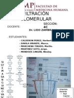 Filtracion Glomerular - Seminario de Histologia